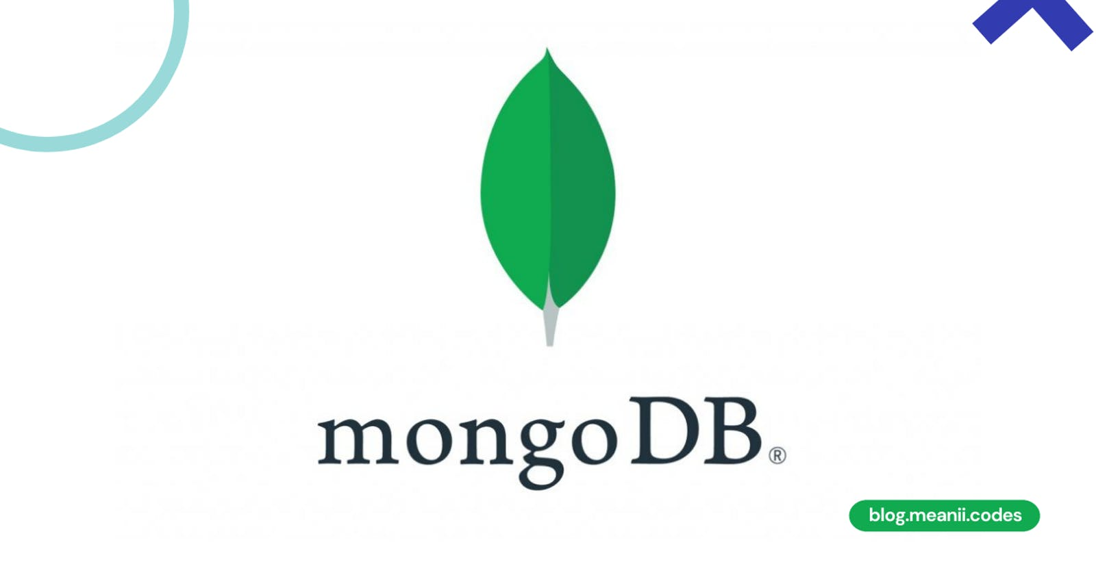 MongoDB: Connecting to NoSQL Databases