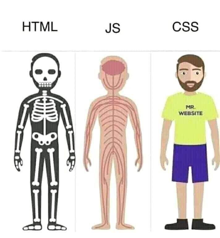 Html-css-javascript.jpg