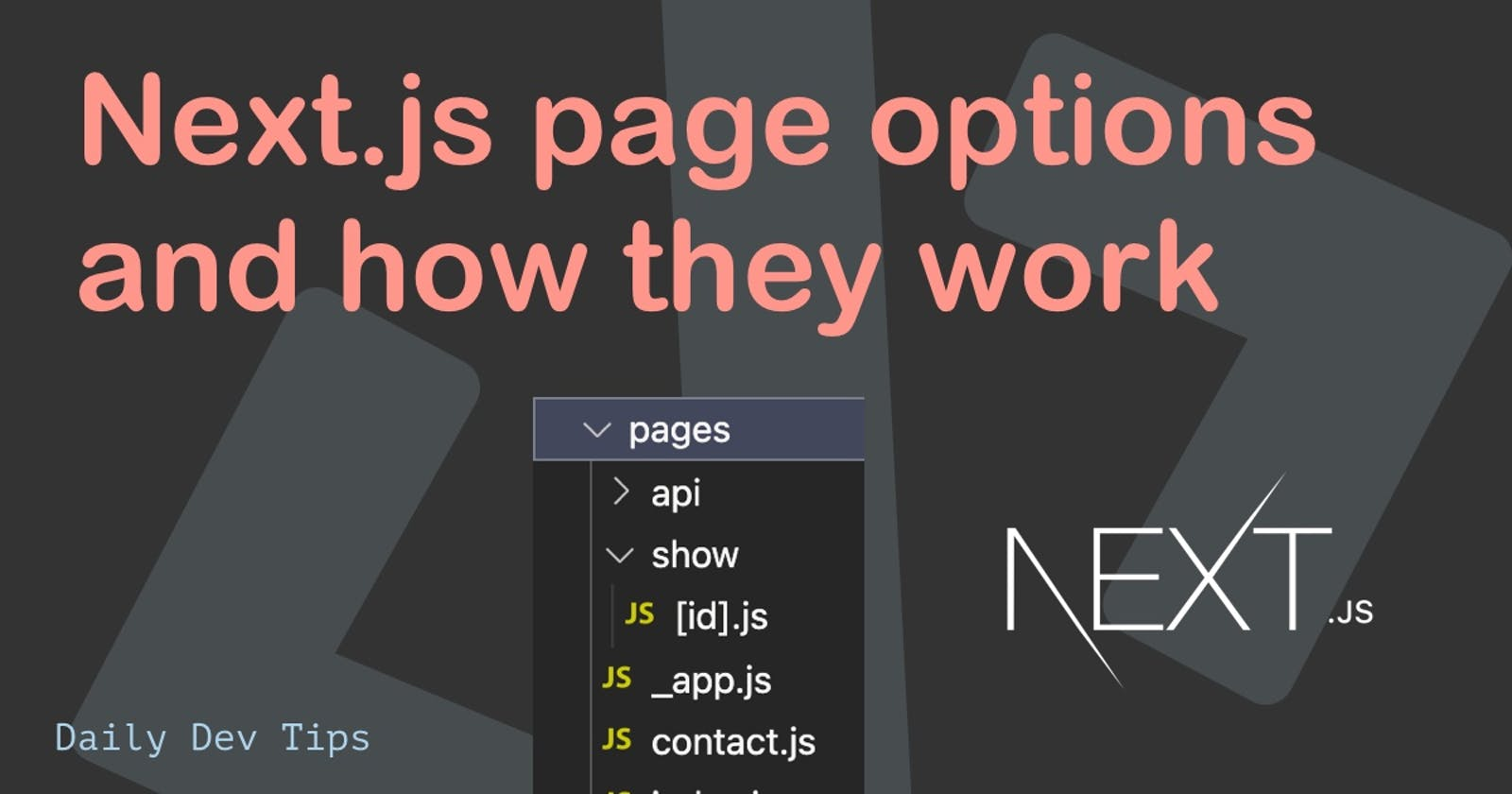 Next.js page options and how they work