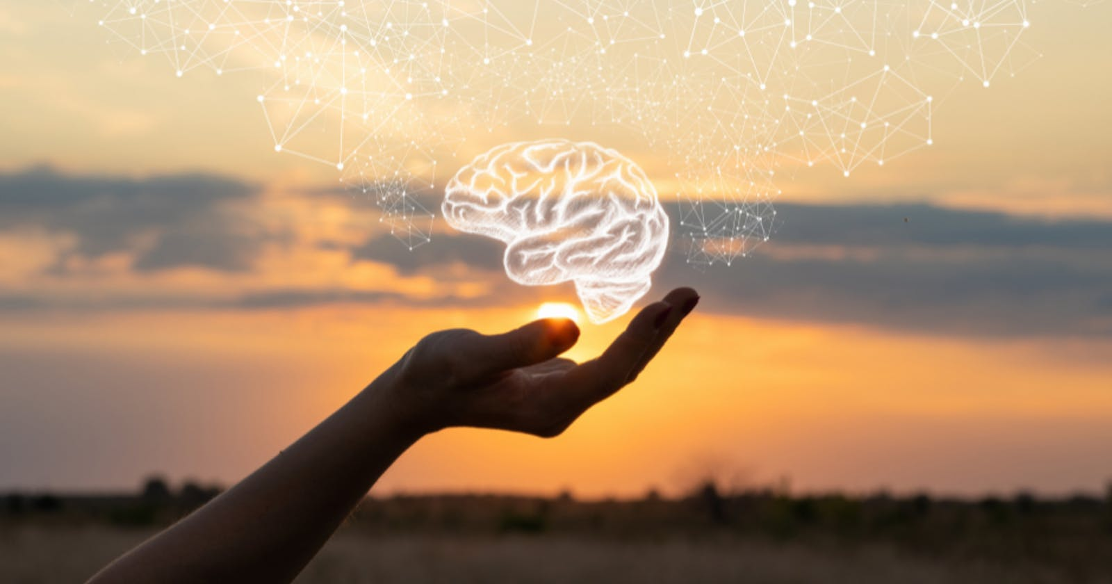 Finding your Brain Trust as a Tech Newbie