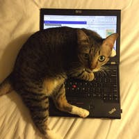 coding-guy's photo
