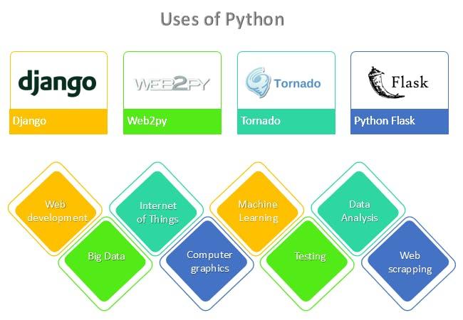 python uses